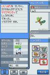 Pokemon_ss_kimori