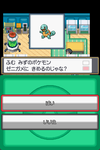 Pokemon_ss_zenigame