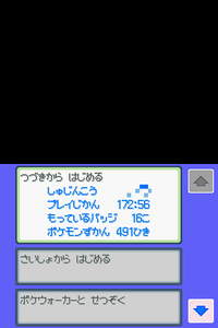 Pokemon_ss_491